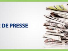 Web LD slides revue presse