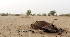 episodes famine sont recurrents dans pays 0 730 385