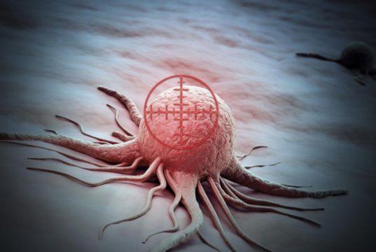 cellules cancereuses suicide fin chimiotherapie