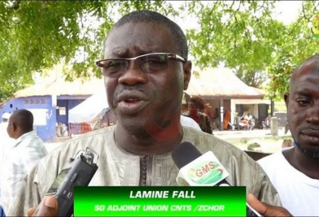 Lamine Fall